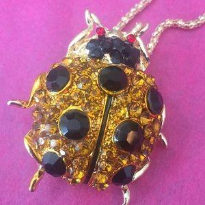 Ladybug 🐞 necklace/broach